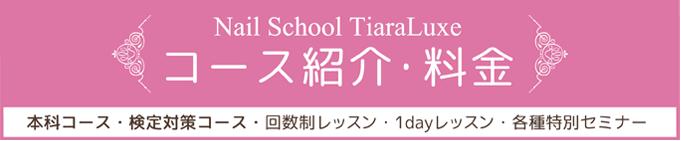 TiaraLuxeコース説明・料金