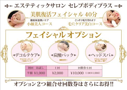 フェイシャル オプション 初回お試し1000円